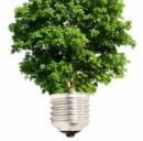 Energia elettrica: meno consumi. Crescono le rinnovabili