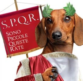 """""""Rata Bassotta"""" di IBL Banca"""