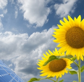 Il fotovoltaico vola in Italia © Chiakto Dreamstime .com