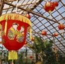Assicurazione viaggio Cina