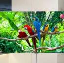 Smart Tv - Lg Oled