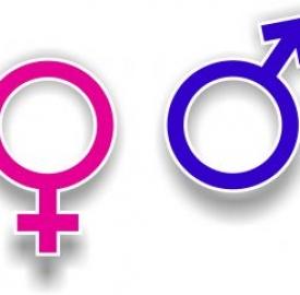 Mondo Web: le differenze tra uomo e donna