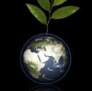 Green energy: sostenibilità per la crescita
