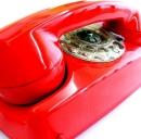 Telecom, 5 centesimi al minuto