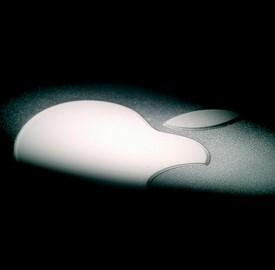 Apple in chiaroscuro