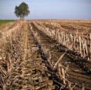 A Parma incentivi alle imprese agricole che producono energia