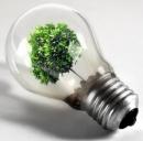Efficienza energetica per la crescita economica