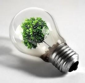 Energia ecosostenibile, dai rifiuti l'elettricità del futuro