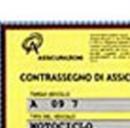 polizze online contraffatte