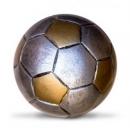 L'Inter affronta in casa il Livorno