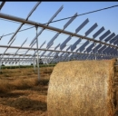 Installazione agrovoltaica in Italia