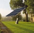Cosa sono gli alberi solari?