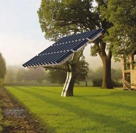 Alberi solari, di cosa si tratta
