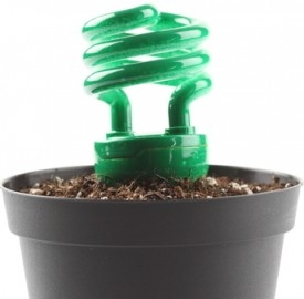 I brevetti verdi sono tantissimi in Italia