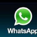 Whatsapp a pagamento sì o no?