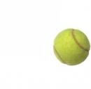 Roland Garros 2013, date e orari tv, gli italiani in gara