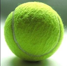 Roland Garros 2013, orari diretta Tv per oggi e domani