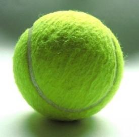 Wimbledon 2013: grandi colpi di scena sull'erba, ecco i risultati