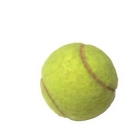 Roland Garros 2013 in tv: risultati e pronostici