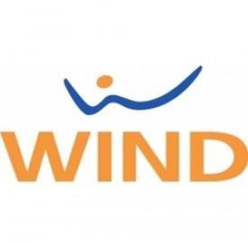 I clienti Wind possono pagare con credito residuo le app sul Google Play Store