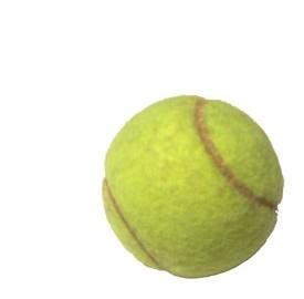 Roland Garros 2013, pronostico e diretta tv streaming Nadal-Ferrer