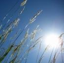 Rinnovabili per una vita ecosostenibile