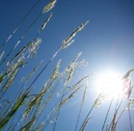 Aumenta la produzione di energie rinnovabili