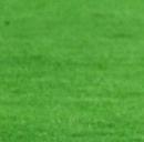 Sampdoria-Juventus: orario e formazioni della prima di serie A