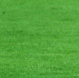 Sampdoria-Juventus: Sampdoria-Juventus della prima di serie A