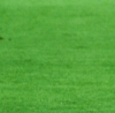 Pronostici Verona-Milan e Sampdoria-Juventus e orari diretta tv Serie A
