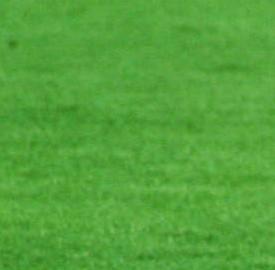 Partita Torino-Sassuolo del 25 agosto, esordio assoluto dei neroverdi