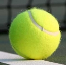 Federer contro Berlocq