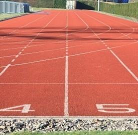 Bolt a Mosca 2013, le gare del giamaicano