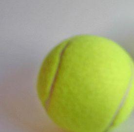 Semifinali Us Open 2013