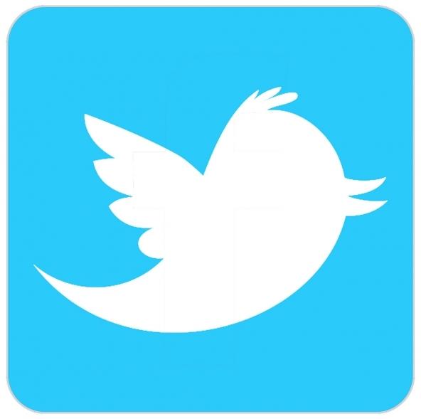Pagamenti tramite Twitter