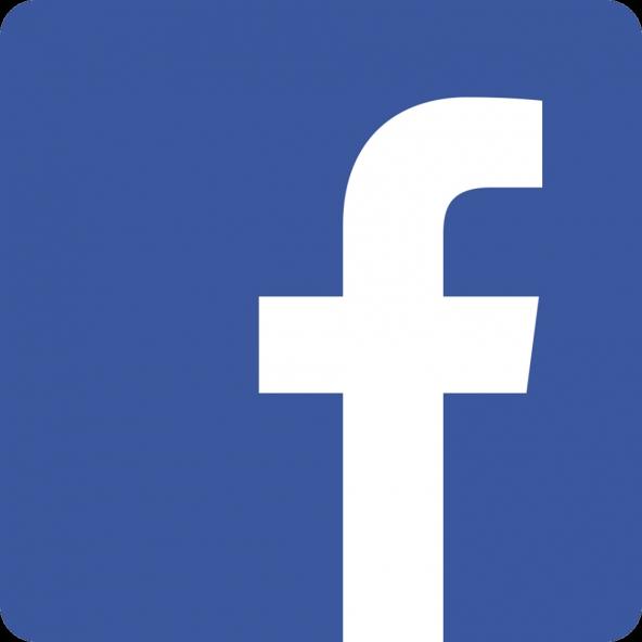 Social network in Italia, Facebook, domina la rete