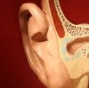 L'applicazione che fa sentire ai sordi