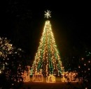 Evitare le truffe a Natale