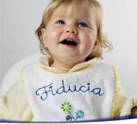 Bonus bebè 2014: come funzionerà?