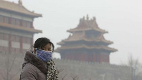 Polizze assicurative contro l'inquinamento