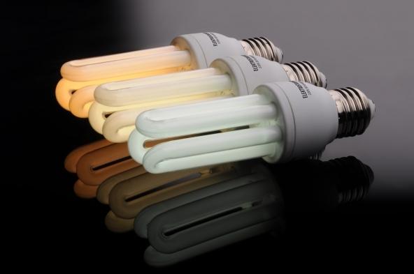 Bolletta della luce: tutte le info