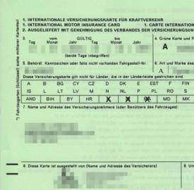 Carta Verde: a cosa serve e come richiederla
