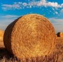 Finanziamenti agricoltura 2017